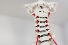 Osteopathie praktijk dordrecht